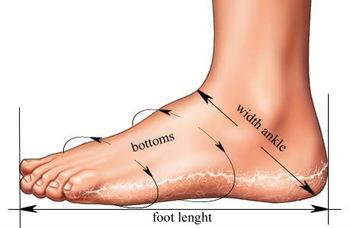 Feet Measurement